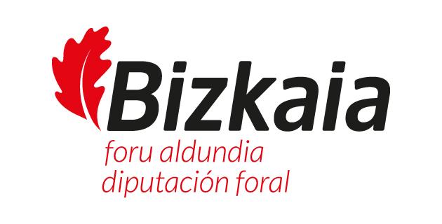 Diputacion Bizkaia subvenciones